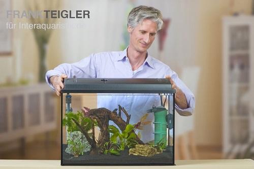 aquarien einrichten richtig und leicht gemacht. Black Bedroom Furniture Sets. Home Design Ideas